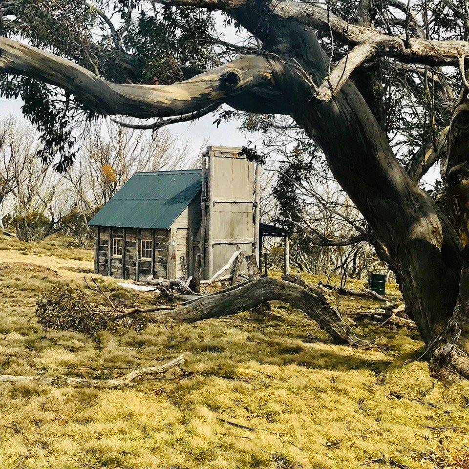 Fitzgerald's Hut